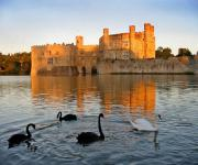 images/eme_gallery/catles/11/Leeds_Castle.jpg